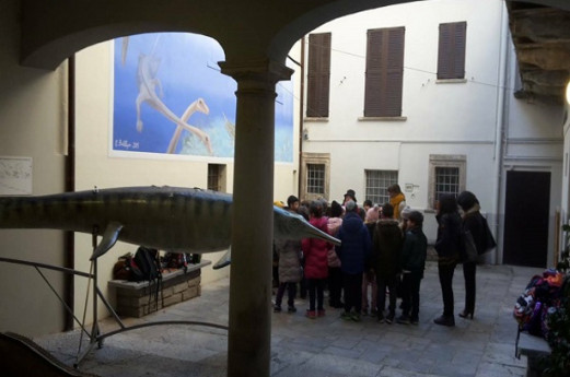 Museo Civico dei Fossili di Besano