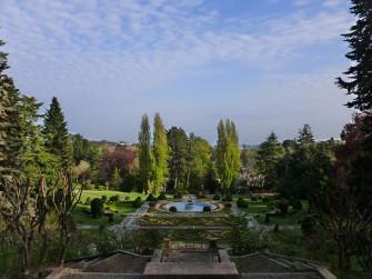 Alberi 3.0 - Villa Toeplitz