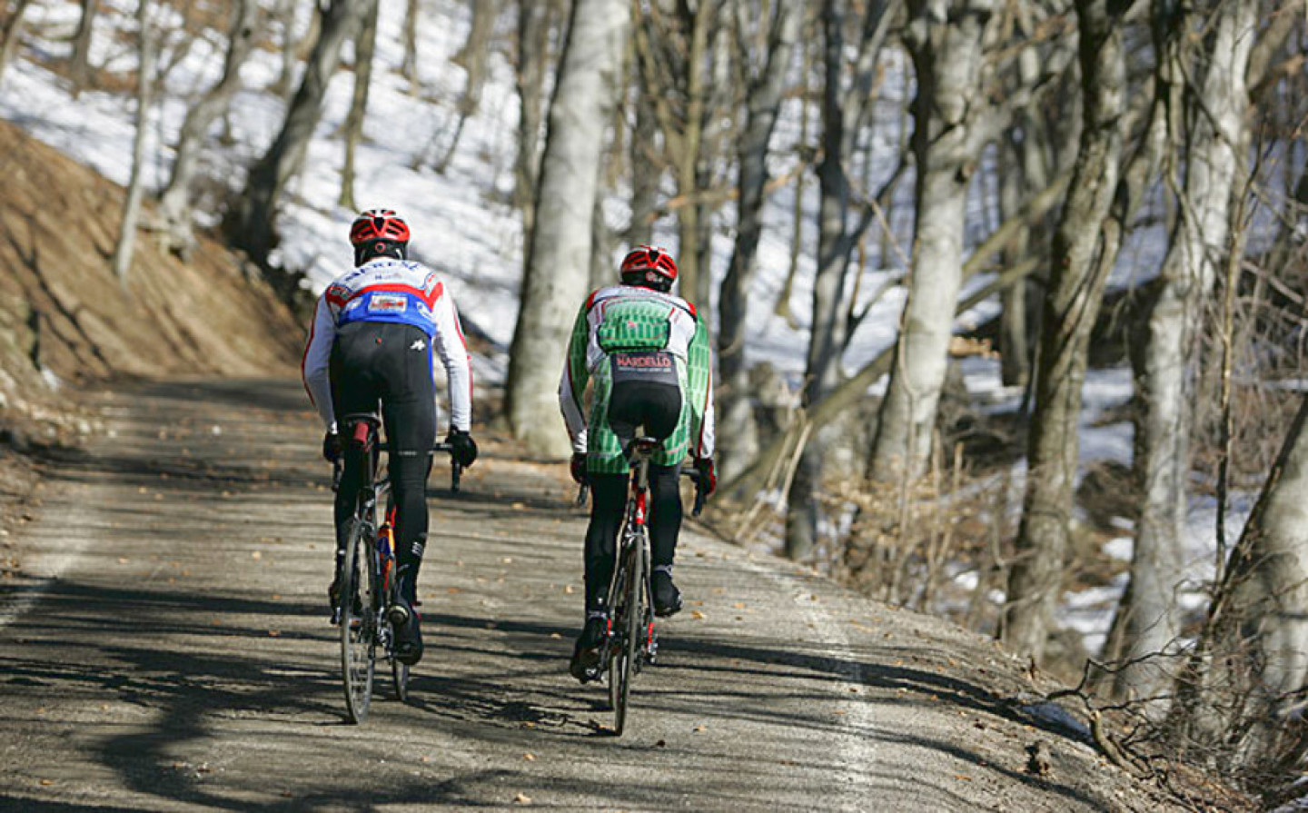 Cycling: itineraries for both beginners and experts