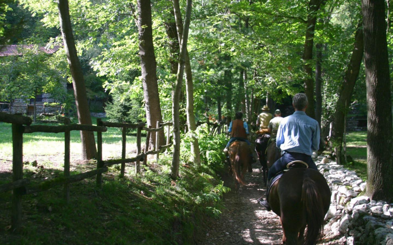 A cavallo tra sentieri e ippovie con servizi dedicati